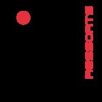 FLEXI RESSORTS -logo